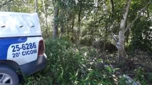Corpo é encontrado com a cabeça esmagada em área de mata no Tarumã