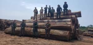 Operação contra desmatamento e queimadas no sul do Amazonas