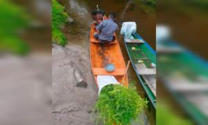 PM detém homem com plantio de maconha no município de Silves