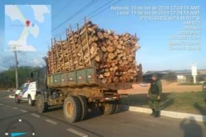 Polícia Militar detém homens transportando madeira ilegal em caçamba na AM-010